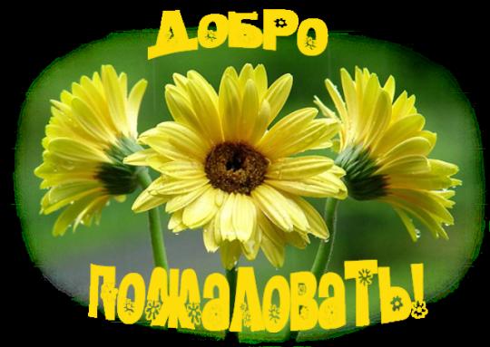 http://1439.ucoz.ru/-.png